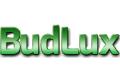 BudLux Michal Grubicki